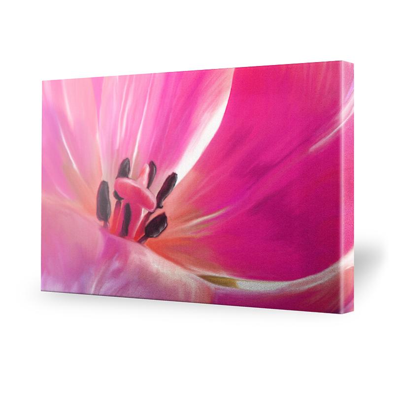 Tulpen Fotos Leinwand Bild