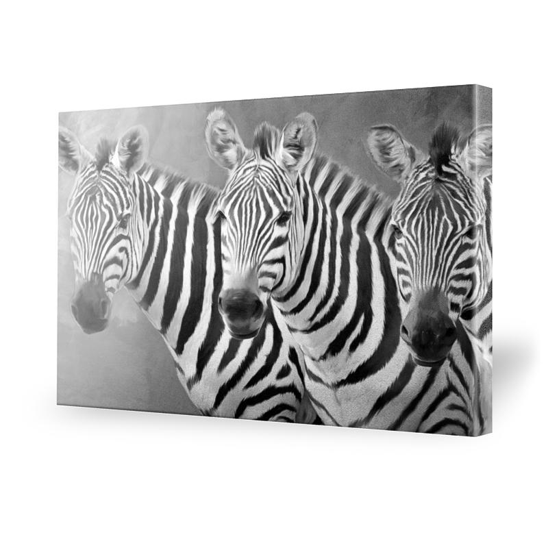 leinwand zebra preisvergleich die besten angebote online kaufen. Black Bedroom Furniture Sets. Home Design Ideas