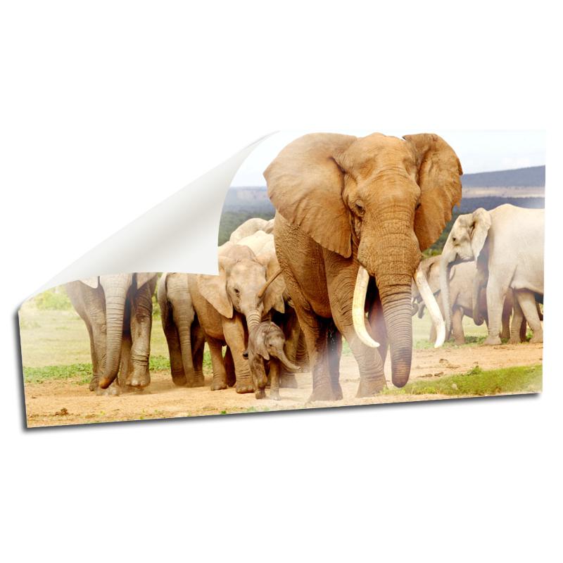 elefant als symbol preisvergleich die besten angebote online kaufen. Black Bedroom Furniture Sets. Home Design Ideas