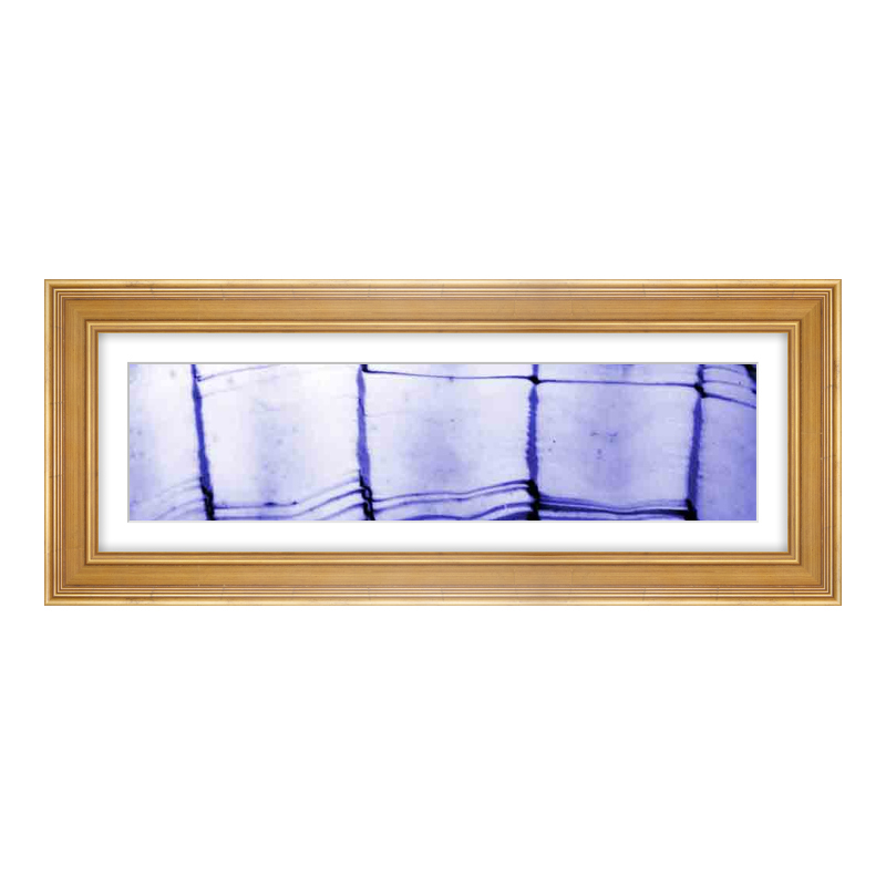 Fotopanorama im Bilderrahmen aus Holz antik in gold als Panorama im Format 60 x 15 cm