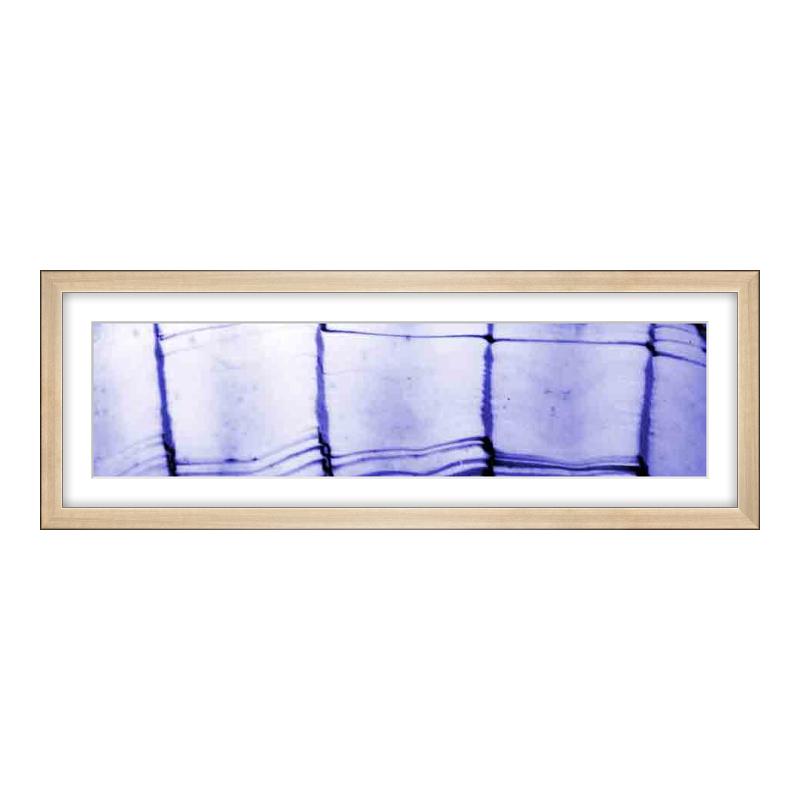 Fotopanorama im Bilderrahmen aus Holz gebürstet in gold als Panorama im Format 60 x 15 cm