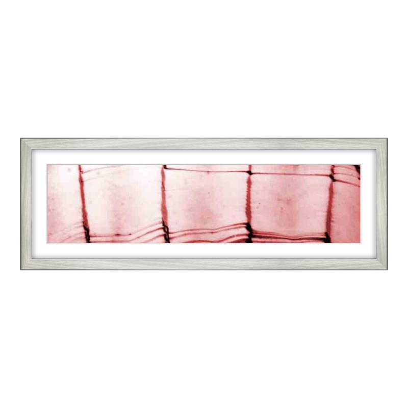 Fotopanorama im Bilderrahmen aus Holz gebürstet in silber als Panorama im Format 60 x 15 cm