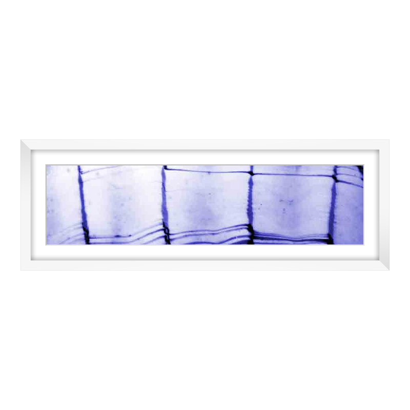 Fotopanorama im Bilderrahmen aus Holz in weiß als Panorama im Format 60 x 15 cm